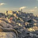 cat-1146714_640