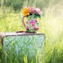 summer-still-life-785231_640