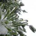 winter-216557_640