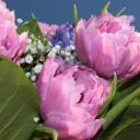 bouquet-1260131_640