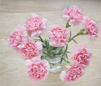 flowers-1313820_640