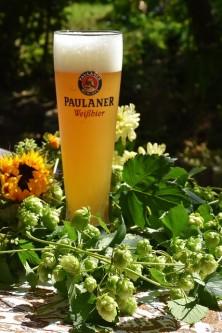 beer-1605826_640