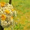 bouquet-1506251_640