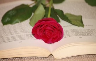 book-1778400_640