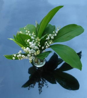 lily-of-the-valley-2012817_640