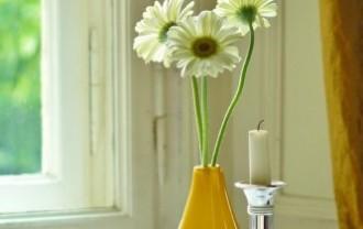 flowers-806328_640