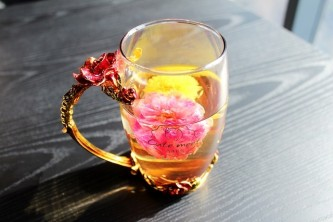 tea-rose-corolla-1871835_640