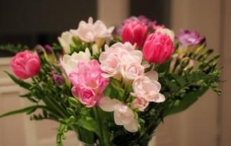 flowers-675943_640