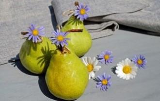 pears-2287888_640