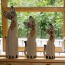 cat-1053846_640