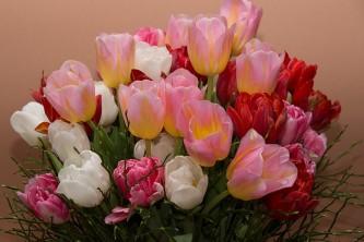 flowers-1258938_640
