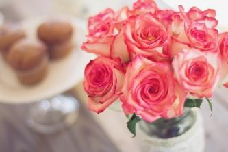 roses-1139010_640