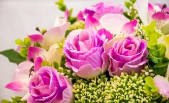 bloom-1850766_640