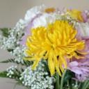 flowers-2266785_640