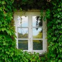 window-1679344_640