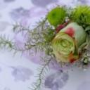 rose-3285135_640